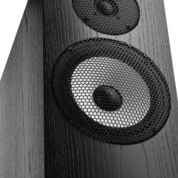 Pylon Audio Ruby 30 – Kolumna podłogowa