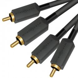 Wireworld Terra – Kabel interkonekt 2 RCA - 2 RCA 1m