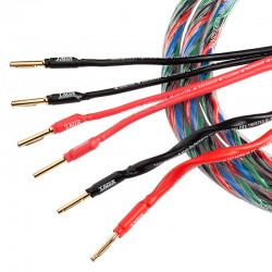 Taga Harmony AZURE-12/14 BI-WIRE - Kable głośnikowe 2 x 3m