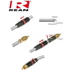 Pozłacany wtyk RCA REAN / Neutrik NYS-373