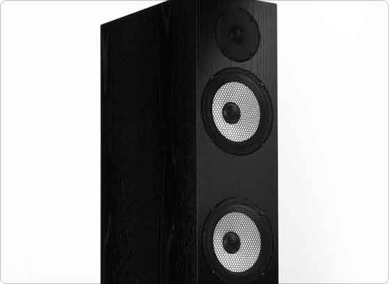 Pylon Audio Ruby 30 - cecha 1
