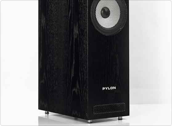 Pylon Audio Ruby 30 - cecha 3
