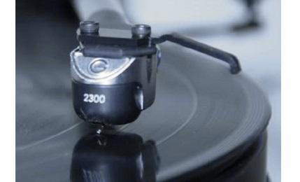 Goldring 2300 - cecha 1